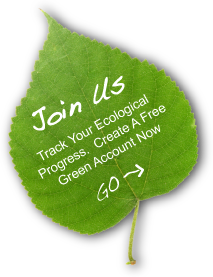 Carbon Footprint Green Account